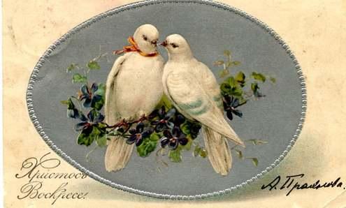 ricolor.org/i/upload/PO_kustov1_500.jpg