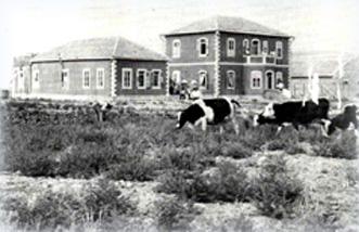 Первые дома в Дгании. Фото 1912 г.