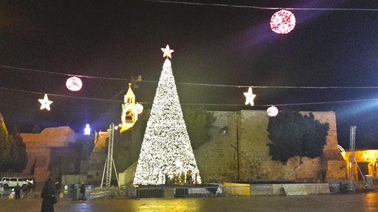 Рождественская ёлка на площади Рождества в Вифлеем в декабре 2016 года